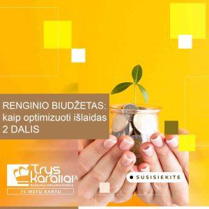 Renginio biudžetas: kaip optimizuoti išlaidas. 2 DALIS